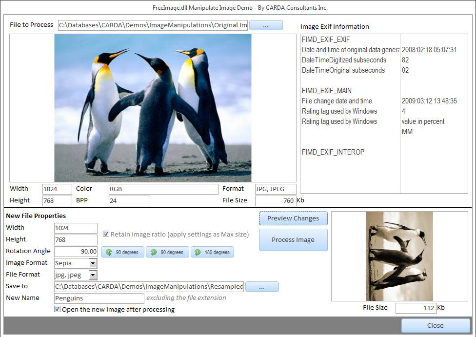 ms access database help resource tips tutorials demos
